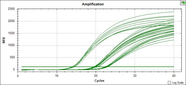 荧光定量PCR典型的扩增曲线