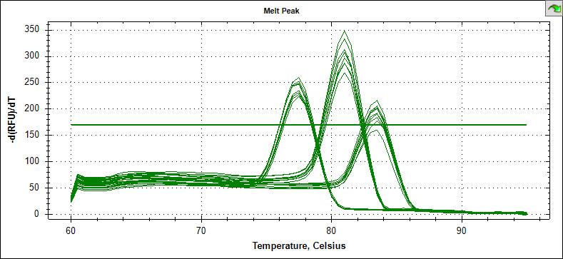 荧光定量PCR典型的溶解曲线